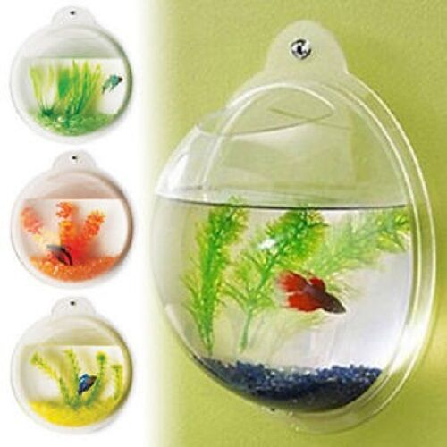 Fish Wall Mounted Bowl/Aquarium Wall Hanging Tank/ Plant Decoration Bubble Bowl