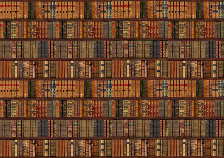 Library Bookcase Shelf Shelves Old Books Photo Wallpaper Wall Mural 335x236cm 1 Of 4only 5 Available