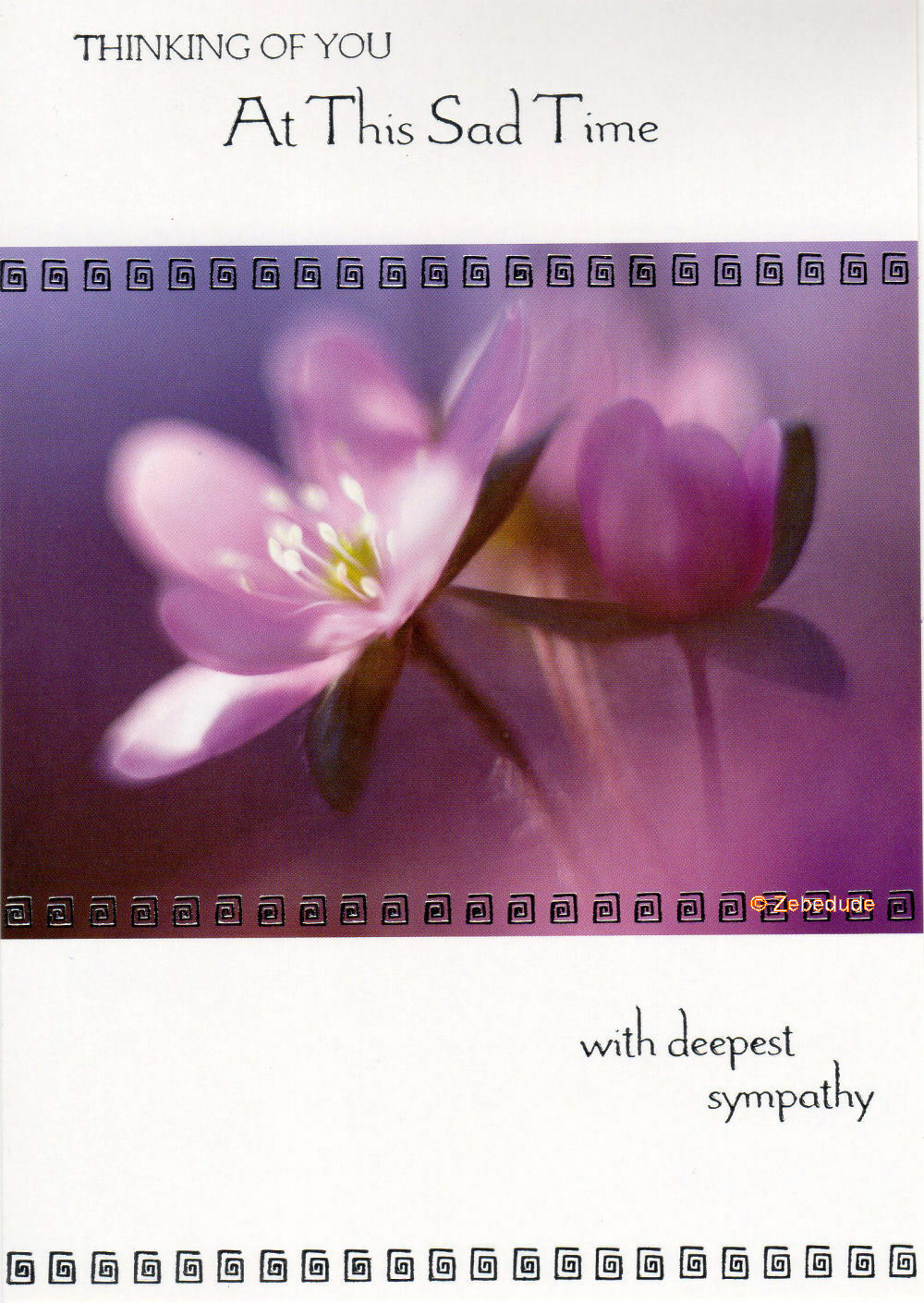 With Sympathy Bereavement Condolence Loss Card Various Designs Free