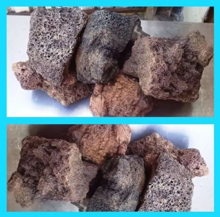 10 Kg Natural Lava Rock Ideal For Fish Tank Aquarium