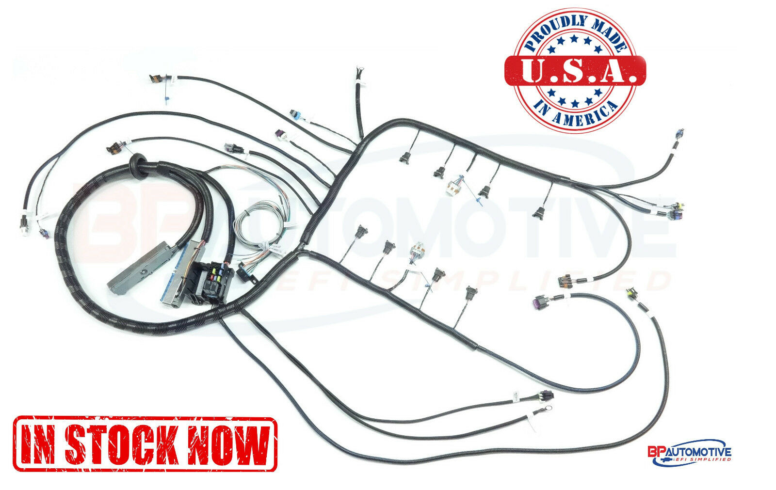 Stand Alone Ls1 Wiring Harness Trusted Diagrams Ls Engine Coil 1997 2006 Dbc Standalone With T56 Or Non Electric