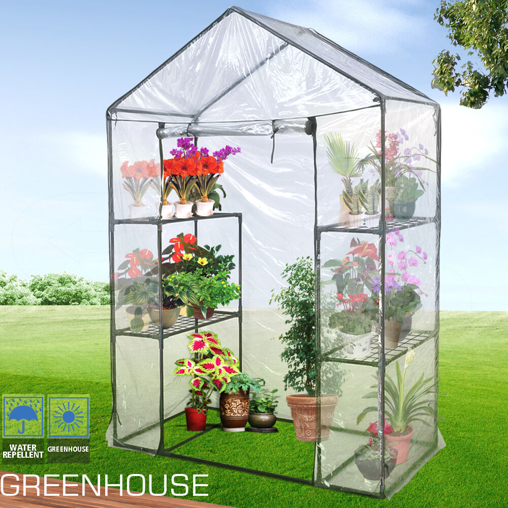 how to grow seeds in a plastic greenhouse
