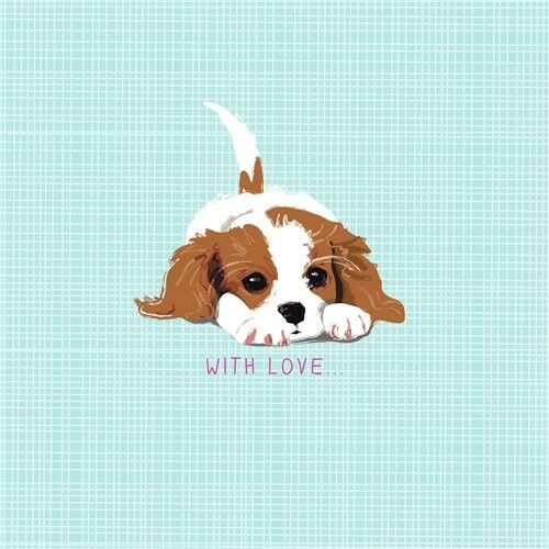 Waggy Tails Charity Birthday Card Little Cavalier King Charles