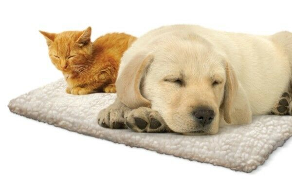 Self Heating Thermal Fleece Puppy Kitten Small Dog Cat Bed Cushion Mat Basket