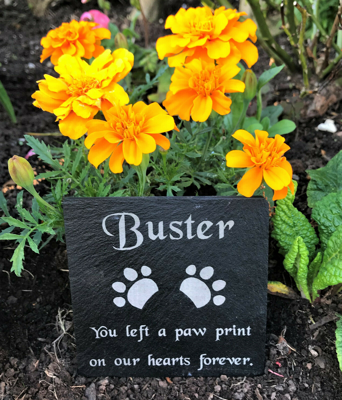 Personalised Engraved Slate Pet Memorial Grave Marker Plaque Dog Cat Rabbit