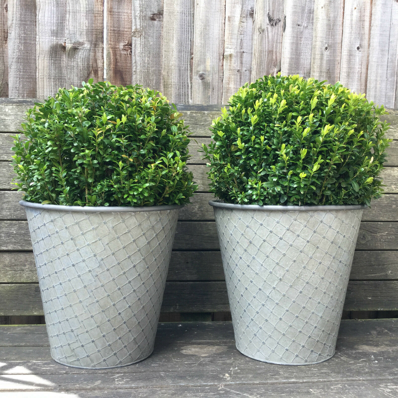 Vintage Style French Grey Set of 2 Round Metal Garden Planters Flower P