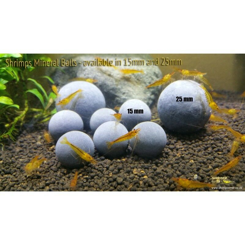 6 x LARGE 25mm Shrimp Mineral Balls for crystal taiwan bee cherry shrimp
