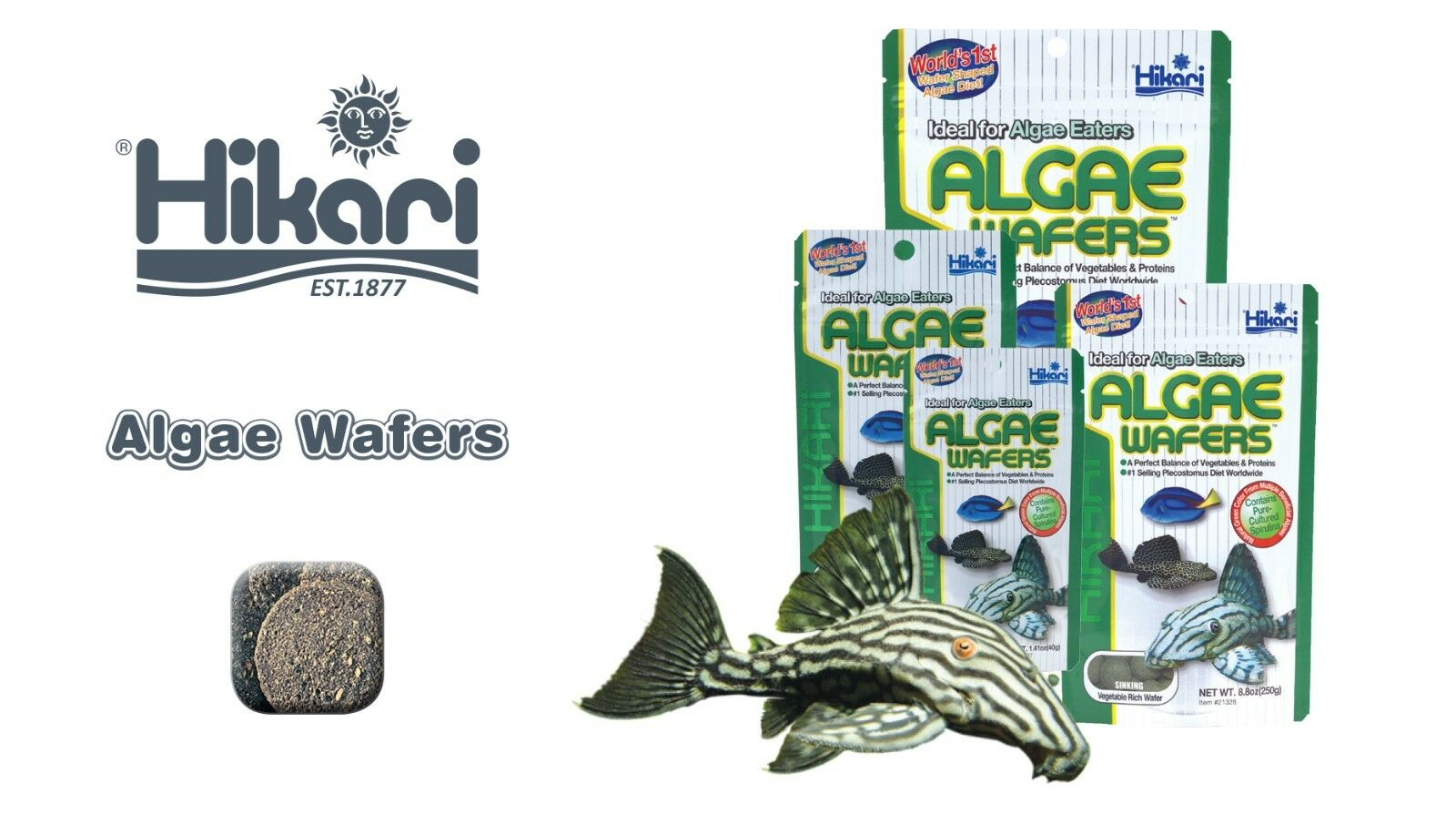 Hikari Tropical Aquarium Algae Wafers 20g 40g 82g 250g 1Kg , japan fish food