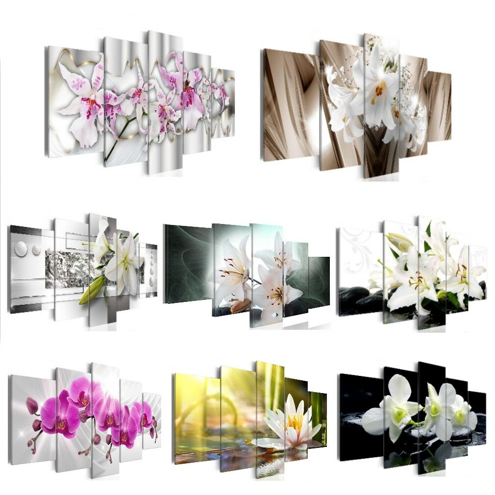 bilder leinwand xxl wandbilder bild kunstdruck orchidee blumen bunt. Black Bedroom Furniture Sets. Home Design Ideas