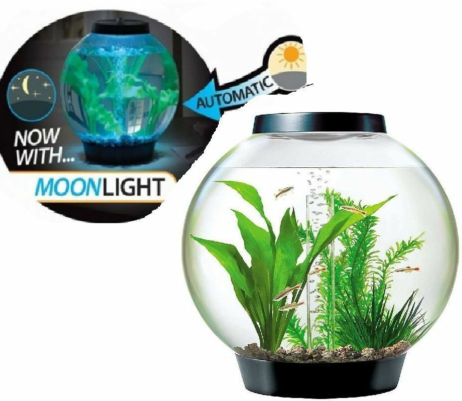 Oase Black Baby Biorb Moonlight Led Fish Aquarium