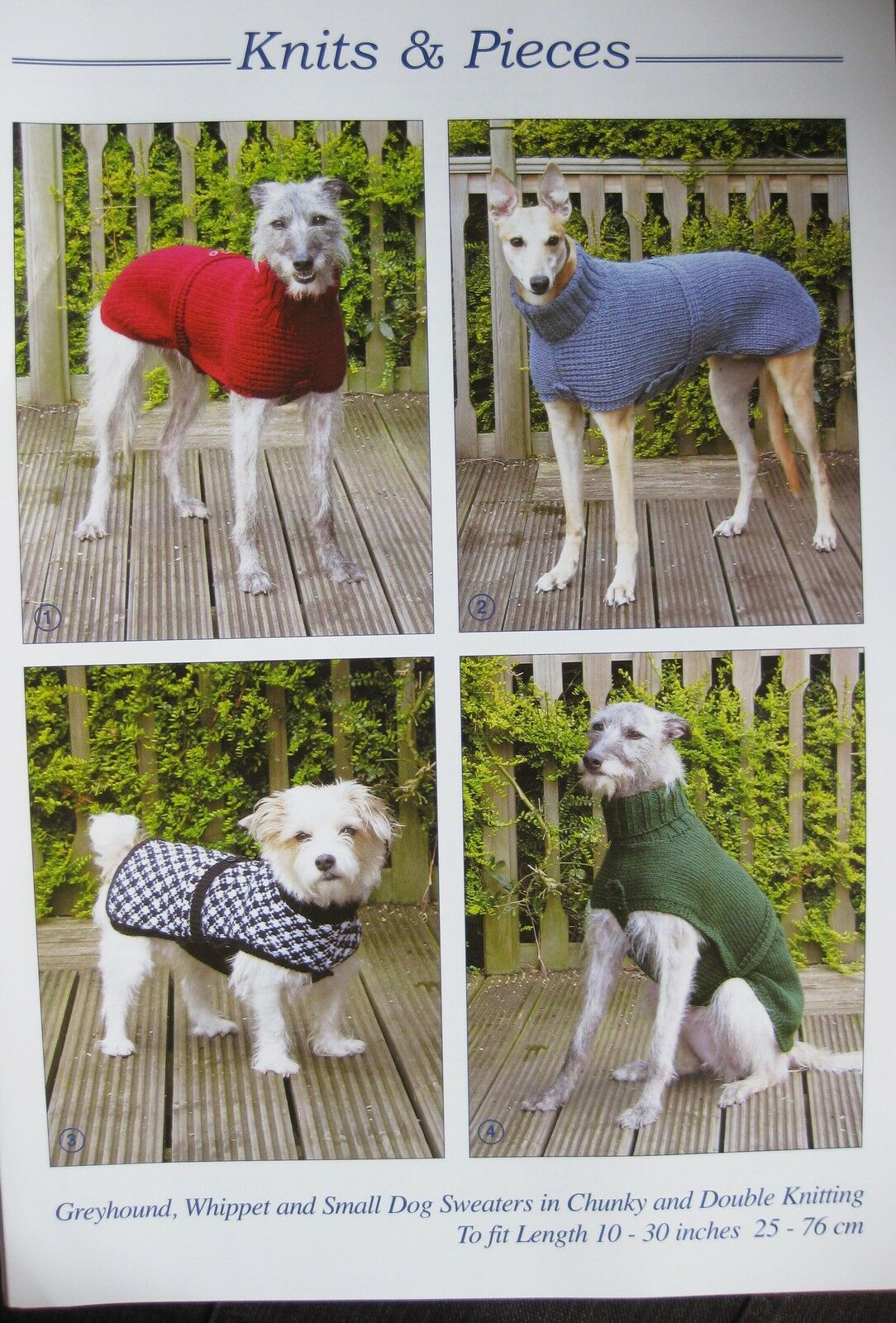 Dog Coats Home Knitting Pattern Free For Greyhounds Dogs