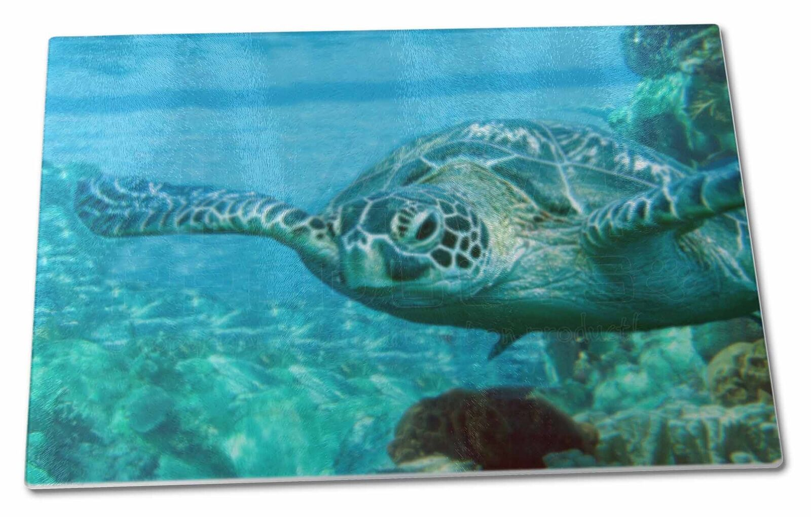 TURTLE BY Coral Extra Large Toughened Glass Cutting, Chopping Board ...