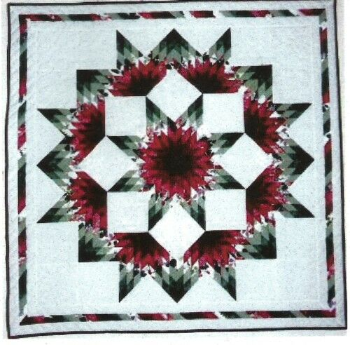 Broken Star Quilt Pattern By Quilting With Roxanne 1000 Picclick