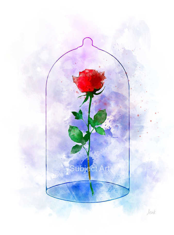 Art Print Enchanted Rose Illustration Beauty And The