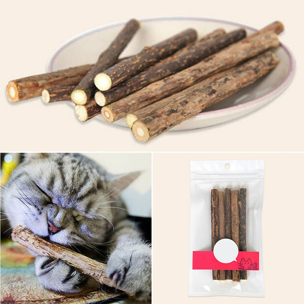 Nepeta Cataire Stick Chat 5 batons pack Jouet pour chat - Envoi Rapide