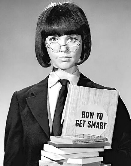 get smart feldon Barbara