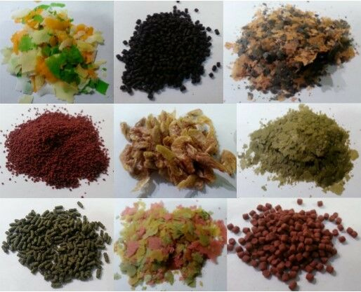 *** Aquarium Fish Food Flakes Pellets Freeze Dried Tropical Marine Pond Tank ***