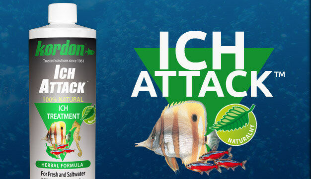 KORDON*Ich Attack 118,473 ml*Natural Disease Treatment for control of Ich