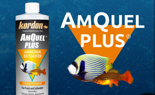 KORDON*AmQuel Plus Water Conditioner that detoxifies ammonia,chlorine118,473 ml