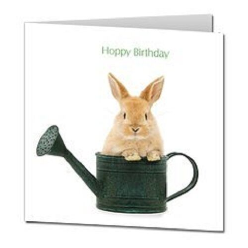 Rabbit In Watering Can Hoppy Birthday Square Birthday Card Jane