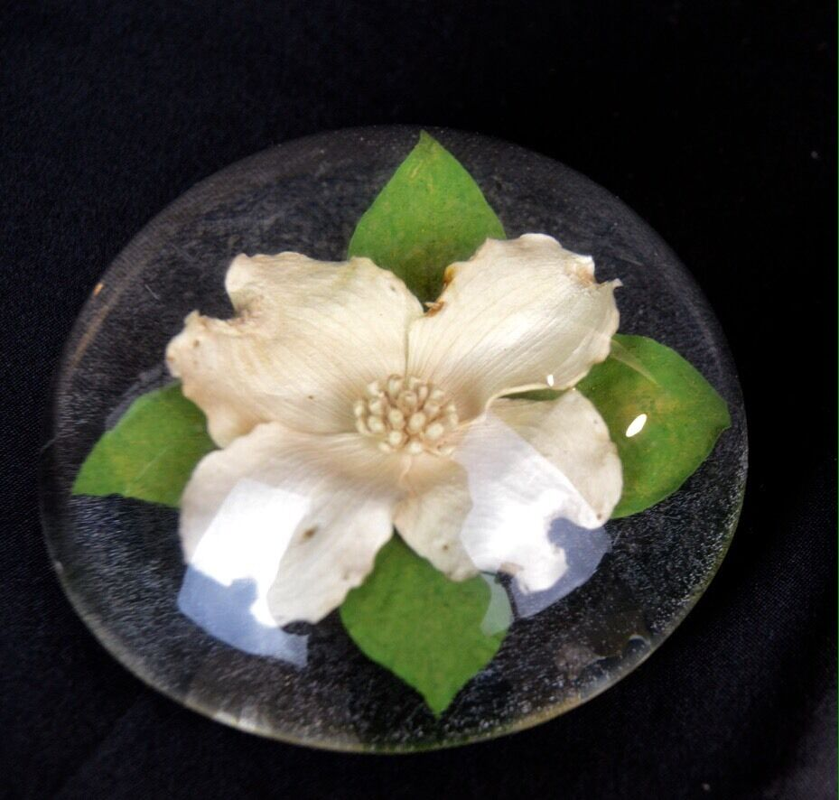 W rolfe signed lucite acrylic white dogwood flower paperweight w rolfe signed lucite acrylic white dogwood flower paperweight 1 of 3only 1 available see more mightylinksfo
