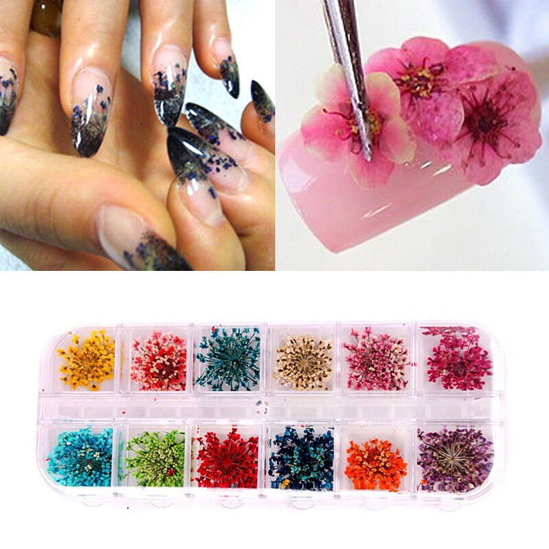 12 Colors Real Nail Dried Flowers Nail Art Decoration Design Diy