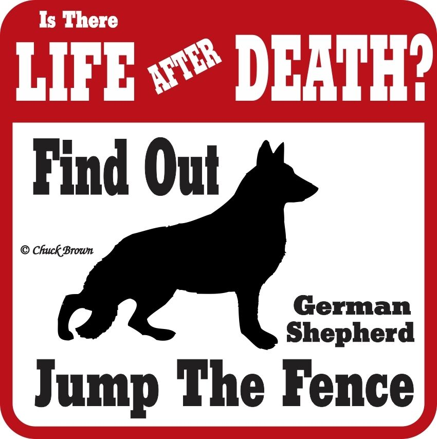 German Shepherd Funny Warning Sign - Many Breeds Avail