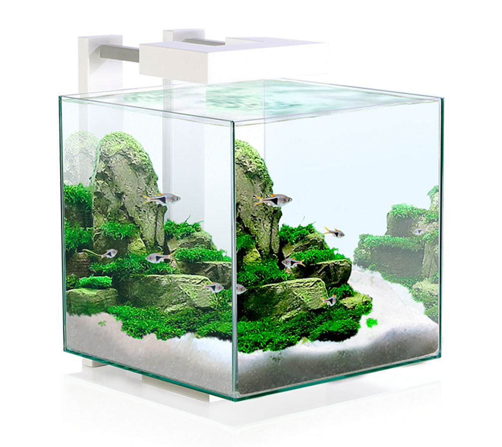 Acquario completo nexus pure cube askoll lampada led for Acquario shop online