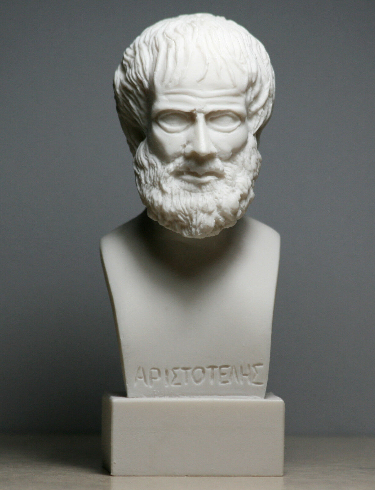 a life biography of aristotle greek philosopher and scientist Biography of aristotle, philosopher he was born in a greek colony about 350 years before the birth later in life aristotle had a son whom he named.