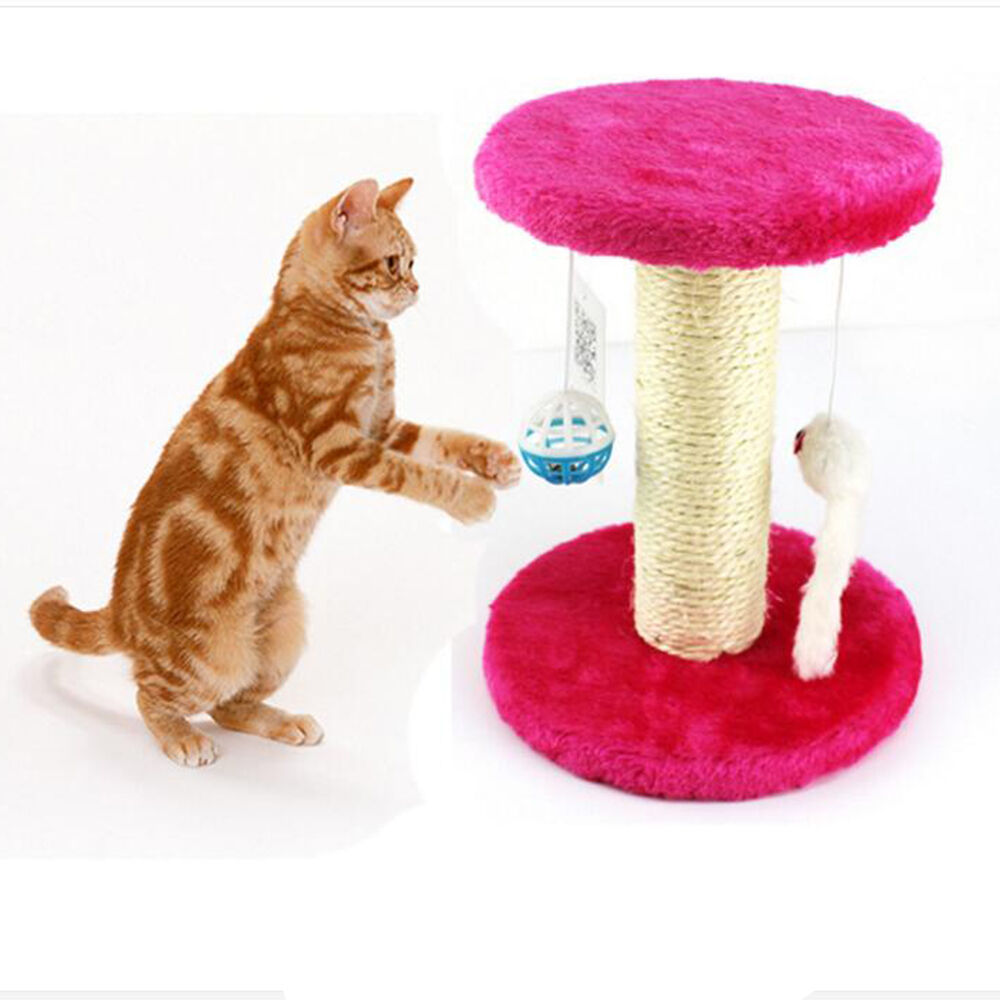 pink feather cat toy