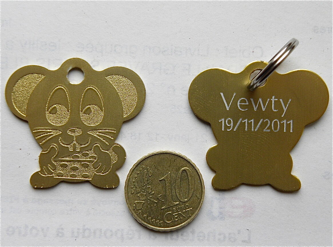MEDAILLE GRAVEE SOURIS OR CHIEN CHAT collier medalla cane hund katze
