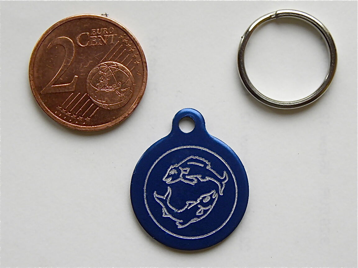 MEDAILLE GRAVEE RONDE POISSON CHATON CHAT collier medalla cane katze