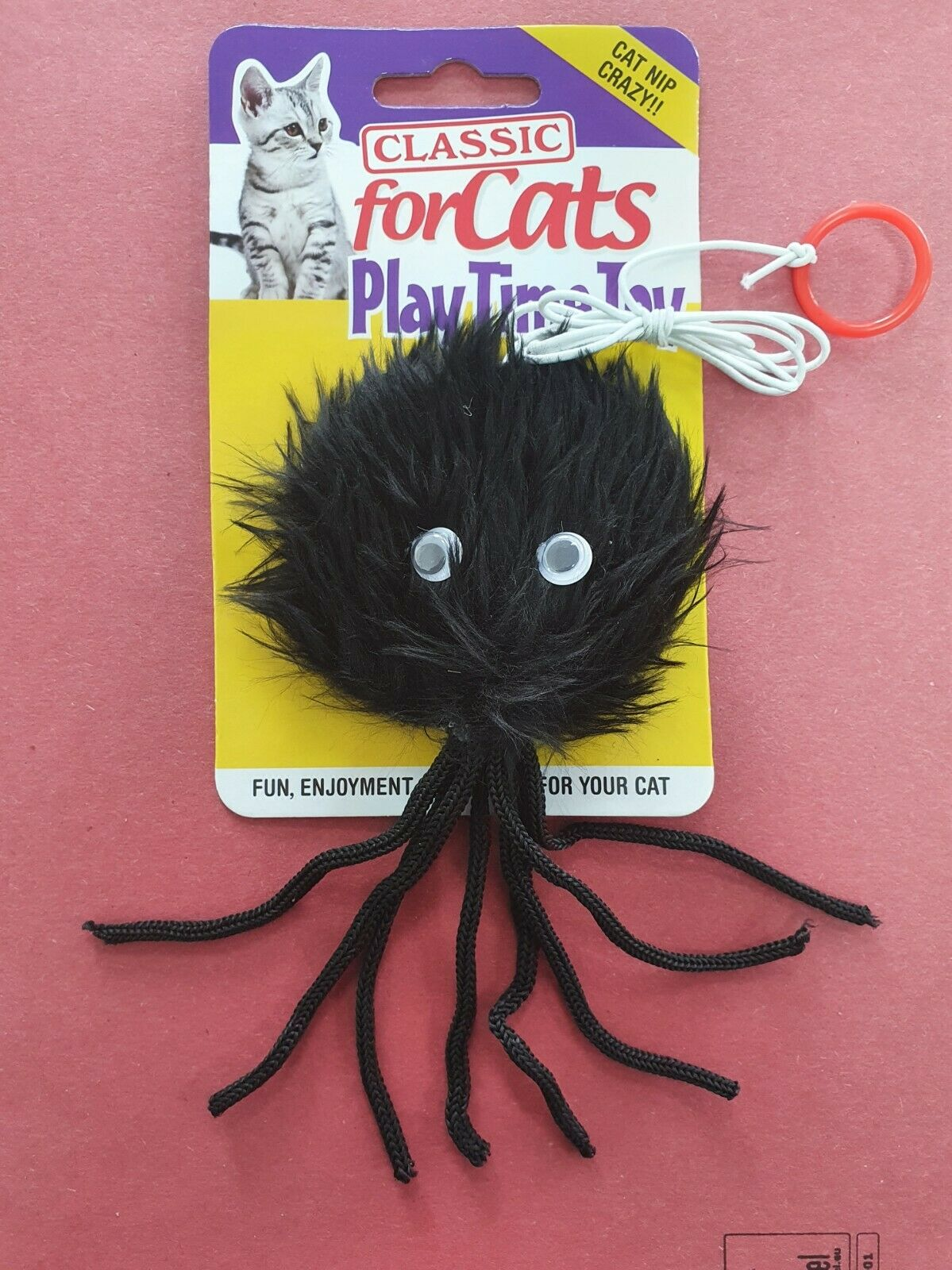 Furry Black Spider with Cat Nip  on a Elastic String, Prepare to Wet Yourself !!