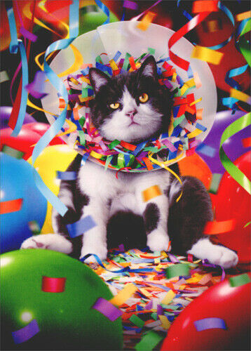 Cat In Party Cone Avanti Funny Birthday Card Greeting Card By