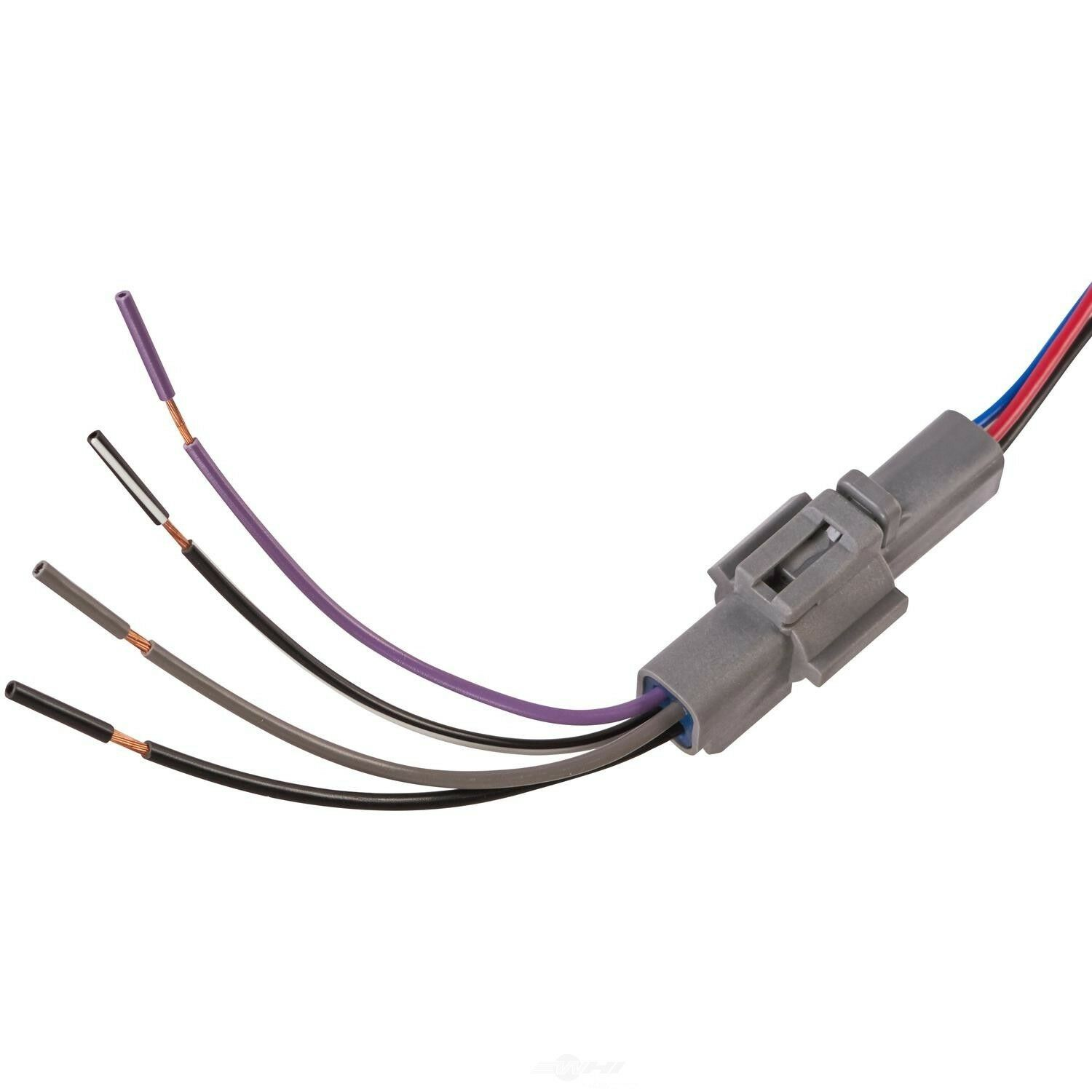 Best Spectra Fuel Pump Wiring Diagram Contemporary - Electrical ...