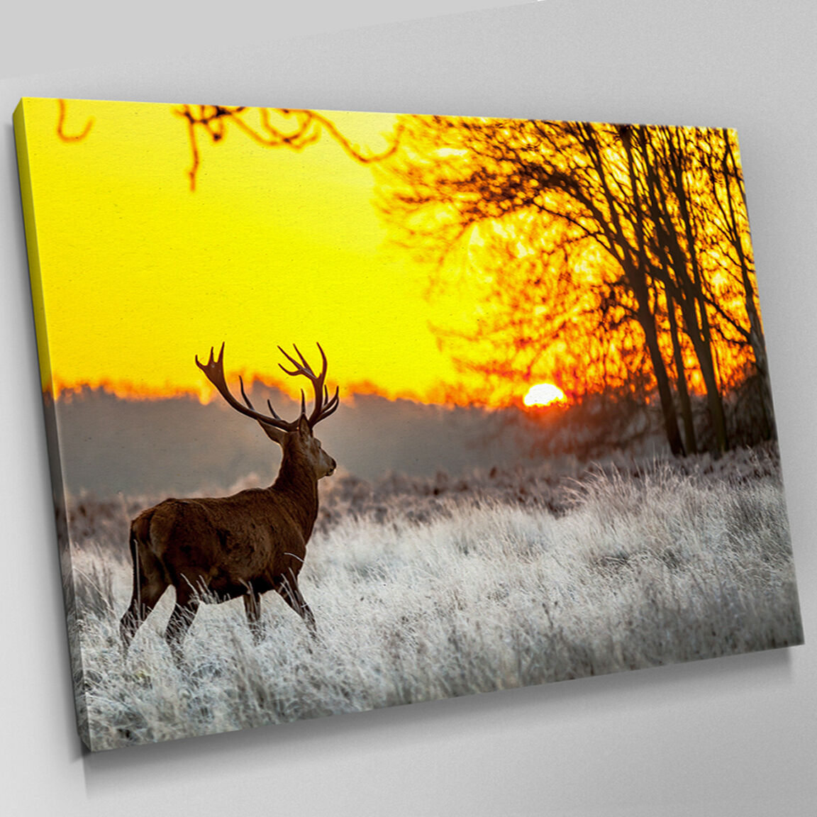 A492 SUNSET ARCTIC Forest Stag Deer Canvas Wall Art Animal Picture ...