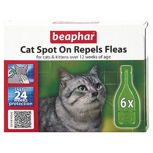 Beaphar chat chatons Spot On Traitement REPOUSSE puces 24 semaines protection