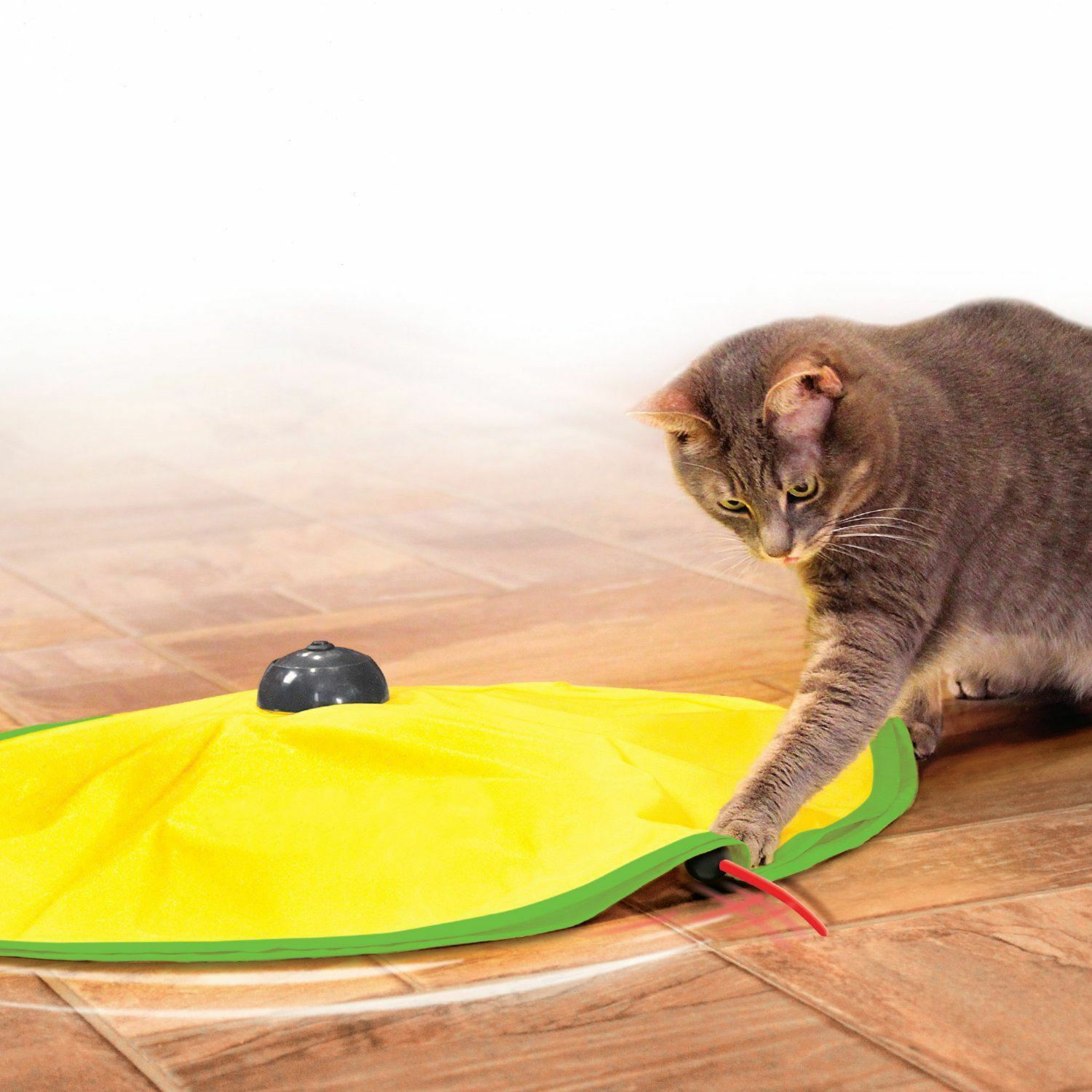 Cat Kitten Interactive Chase Play Toy Revolving Moving Chasing Mouse Motion Game