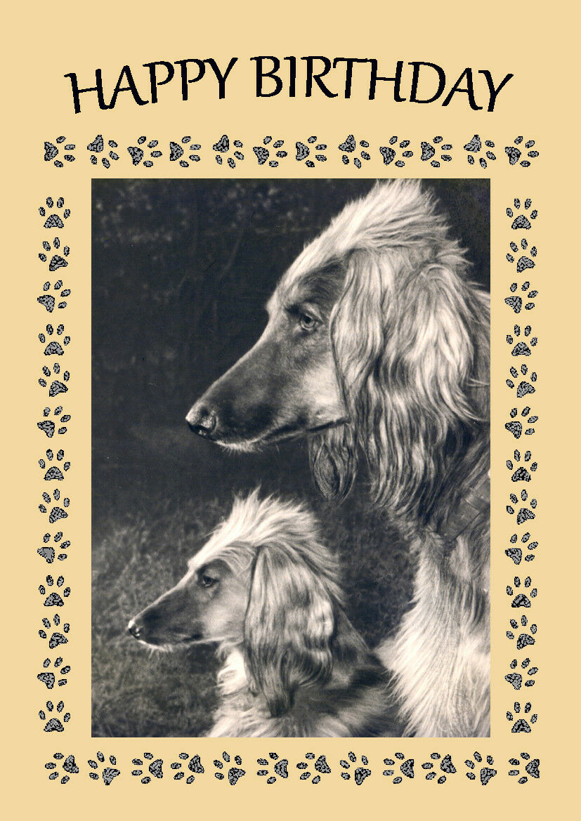 Afghan hound dog birthday greetings note card 199 picclick uk afghan hound dog birthday greetings note card 1 of 1 see more kristyandbryce Choice Image