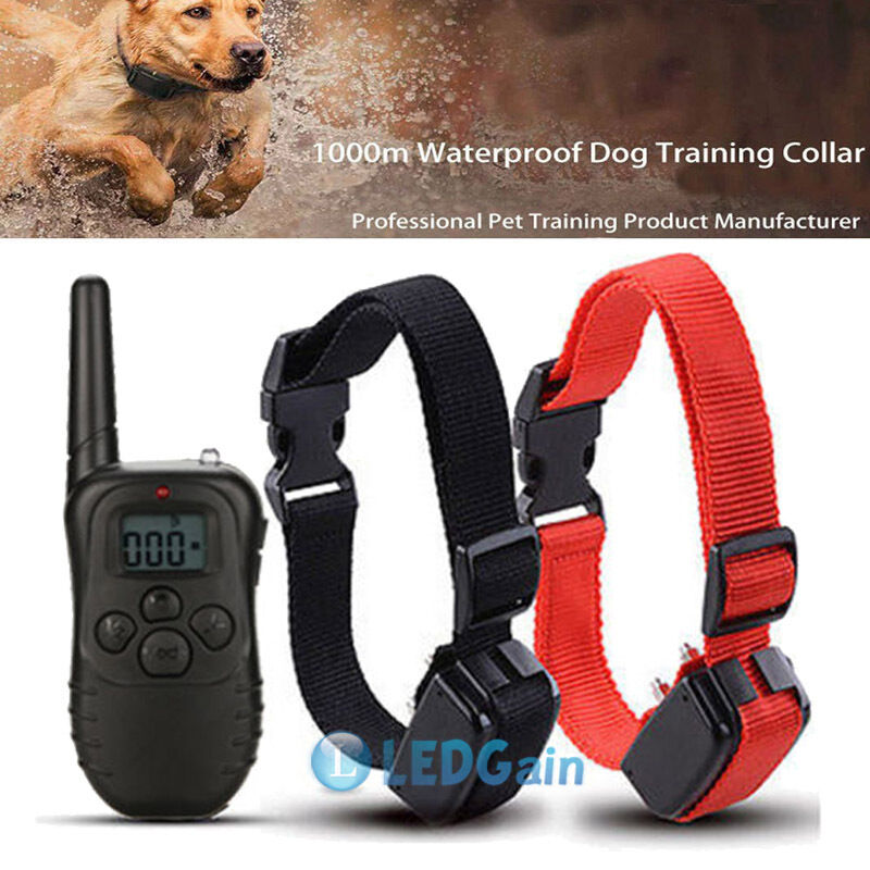 Dog Shock Collar With Remote Canada