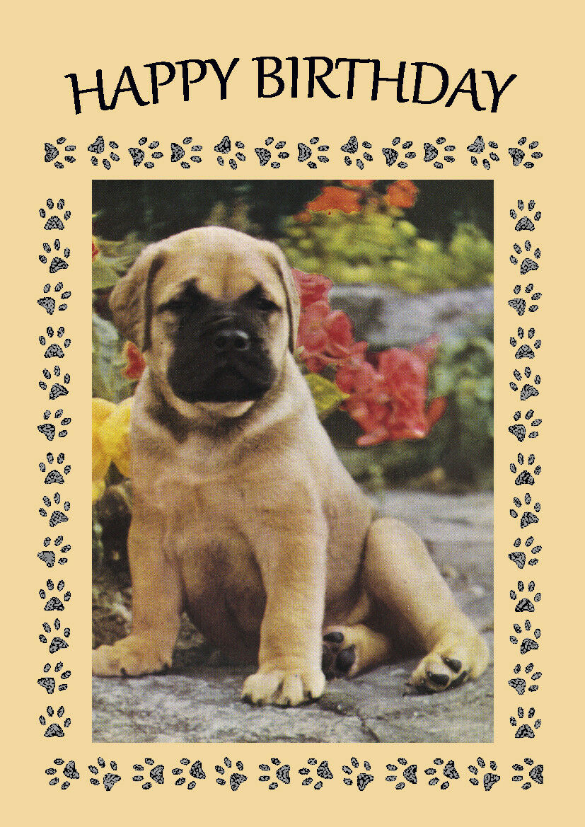Bullmastiff pup dog birthday greetings note card 199 picclick uk bullmastiff pup dog birthday greetings note card 1 of 1 see more kristyandbryce Choice Image