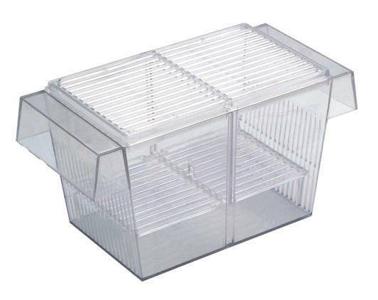 Aquarium Fish Tank Hatchery for Breeding for Fish Quarantine Boyu FH-101