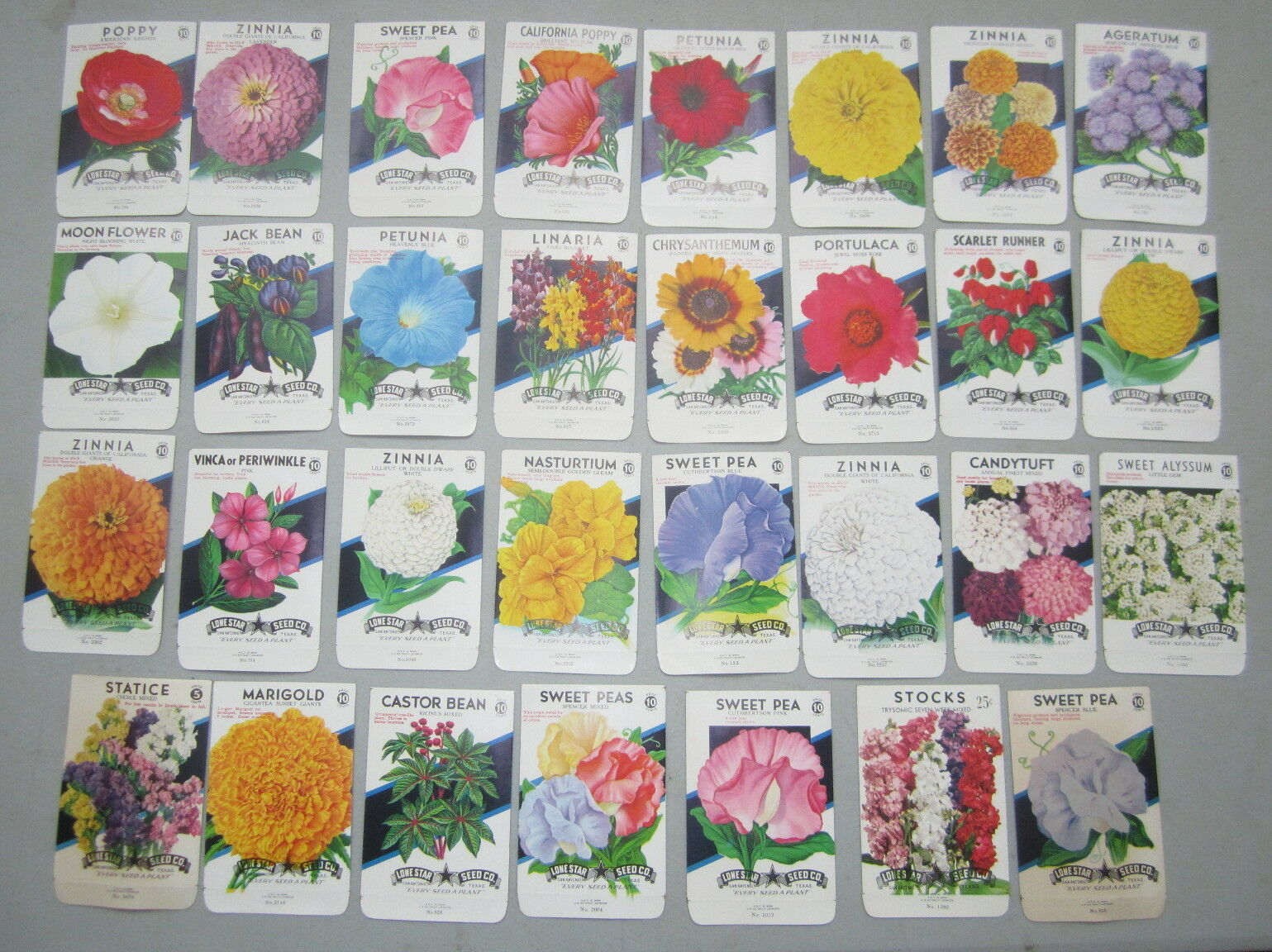 Lot of 31 Old Vintage 1950's - FLOWER  - SEED PACKETS - Lone Star Seed - EMPTY