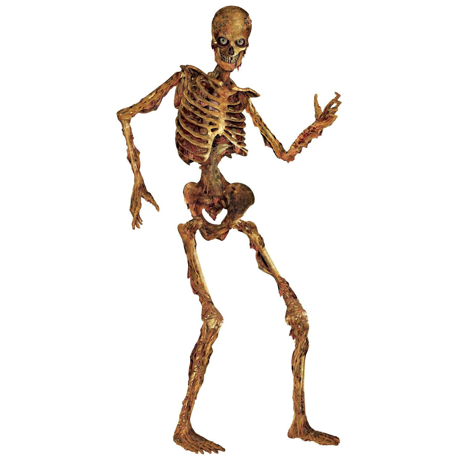 6 ft life size jointed skeleton halloween party haunted house