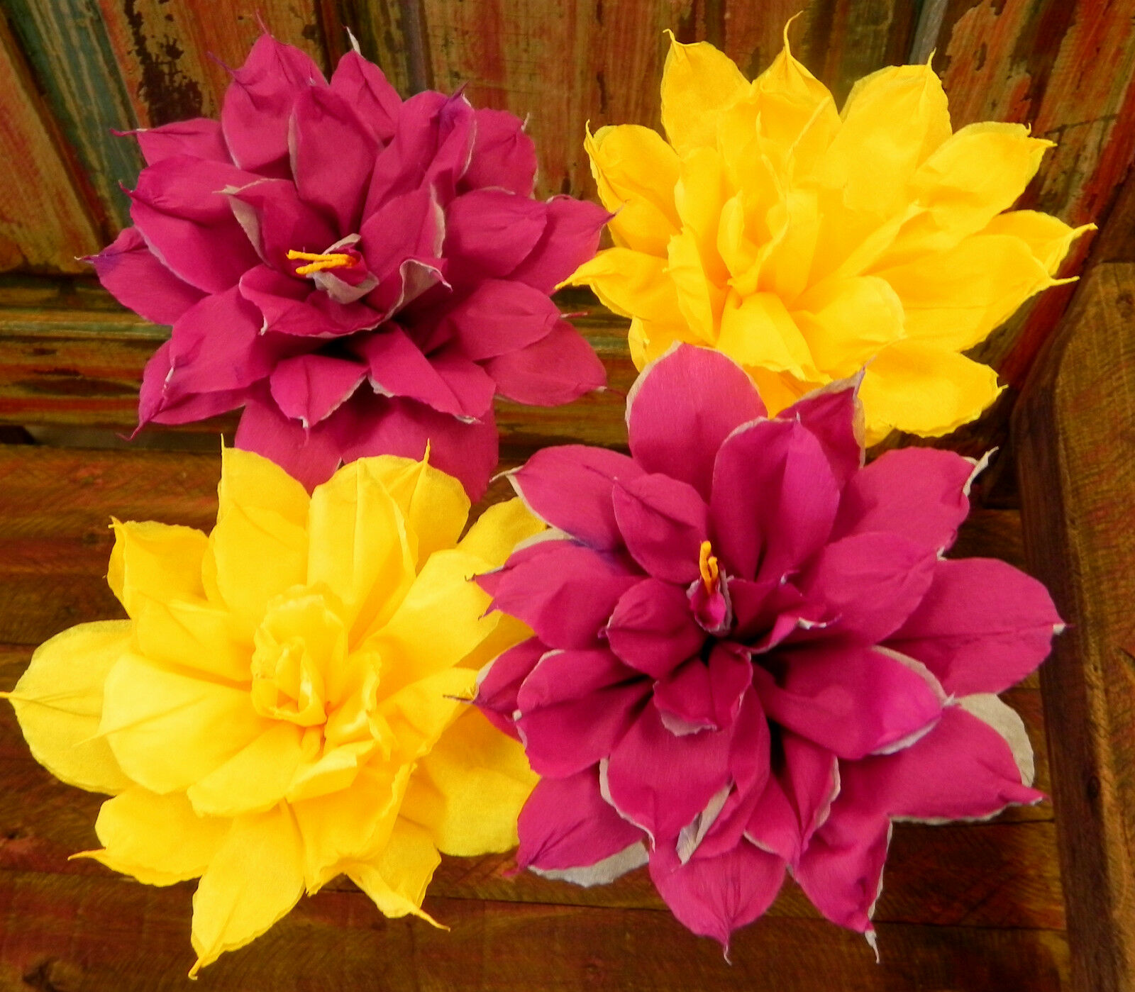 Mexican Crepe Paper Flowers Set of 4 Bi Color STAR We Make Special Orders&quo