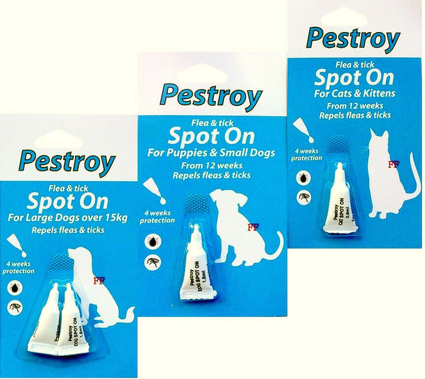 Pack Of Pestroy Flea & Tick Spot On For Puppies,Small Dog,Cat & Kitten
