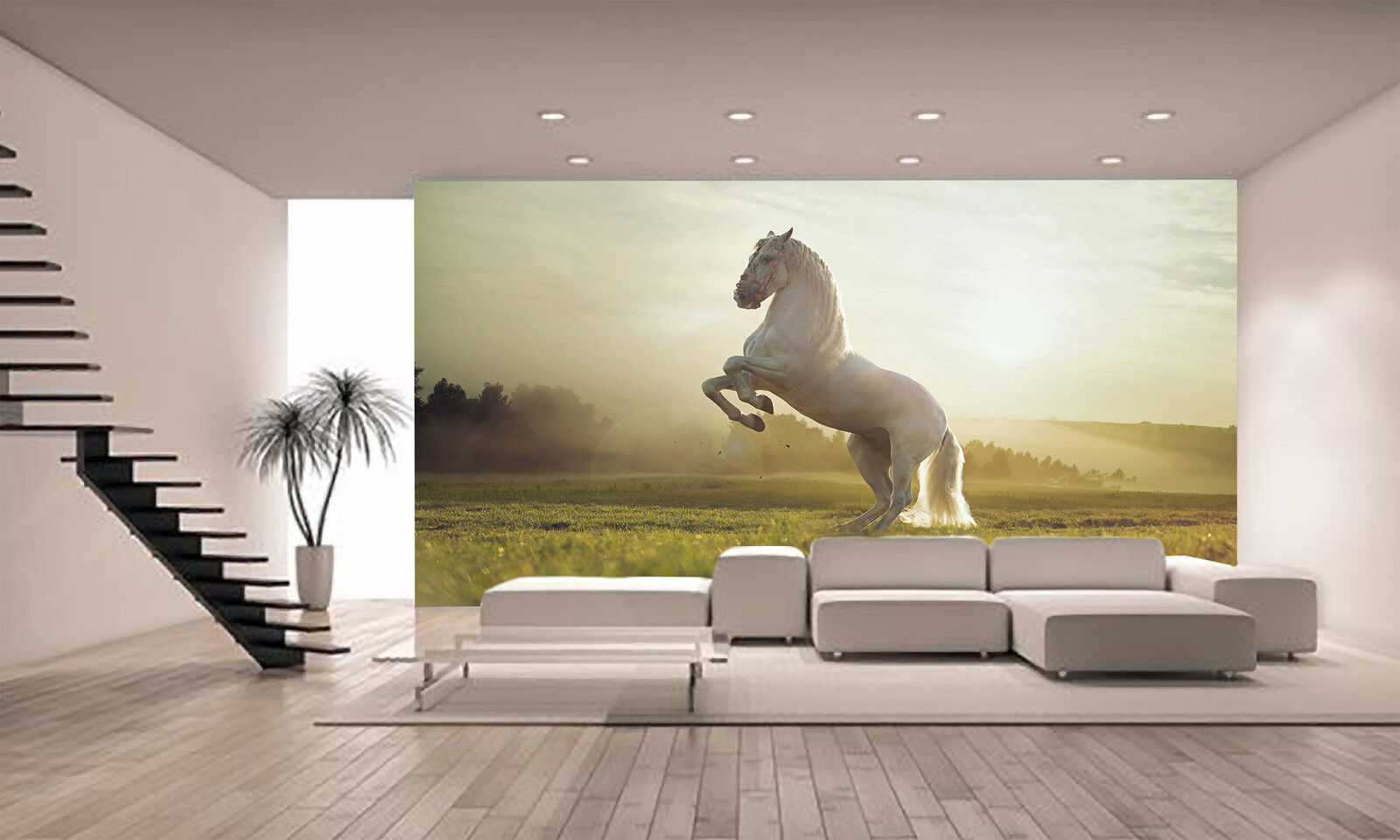 Royal white horse wall mural photo wallpaper giant decor for Equestrian wall mural