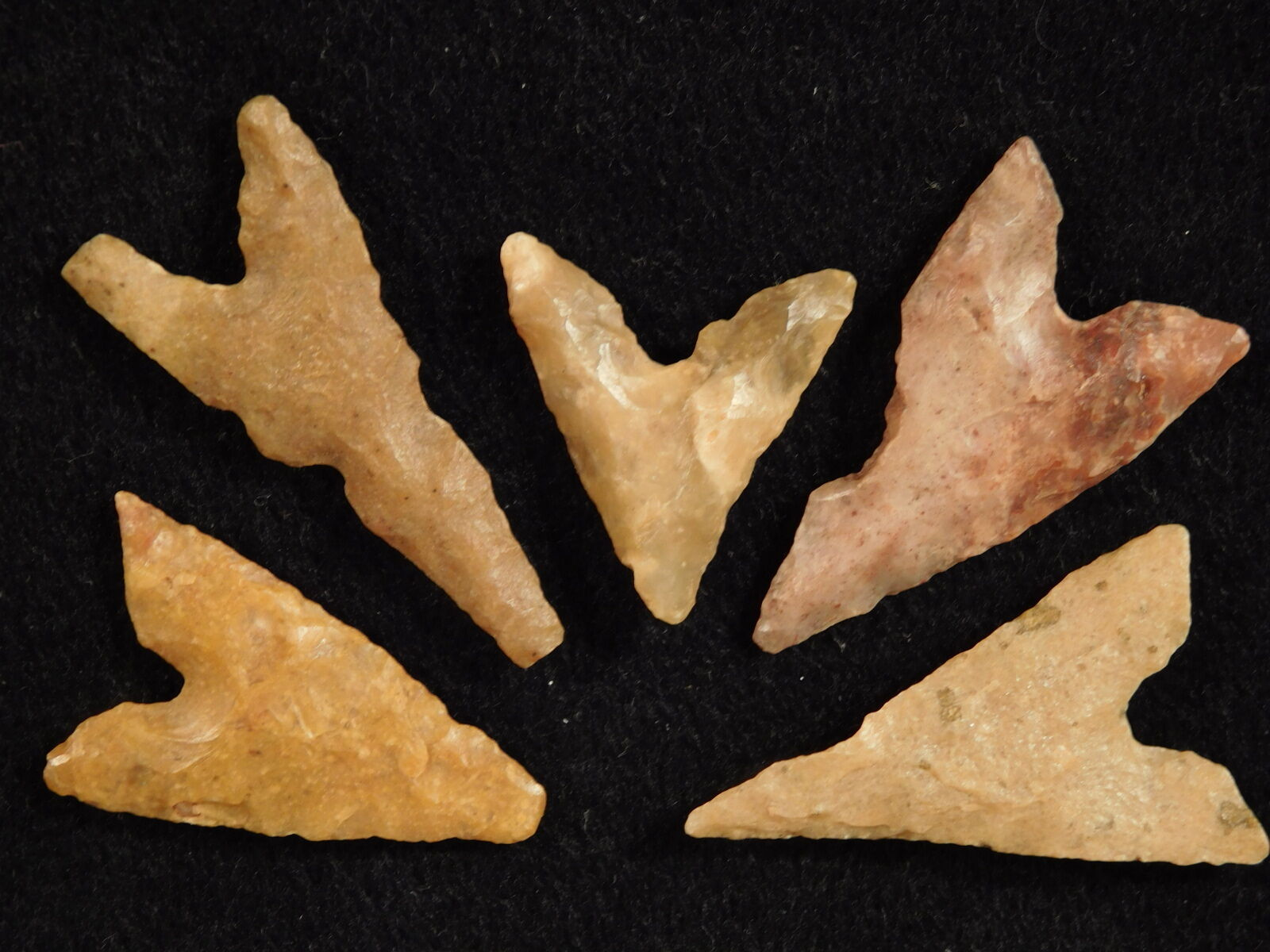 Lot of Small Very Nice 100% Authentic Ancient North African Arrowheads! 83.76