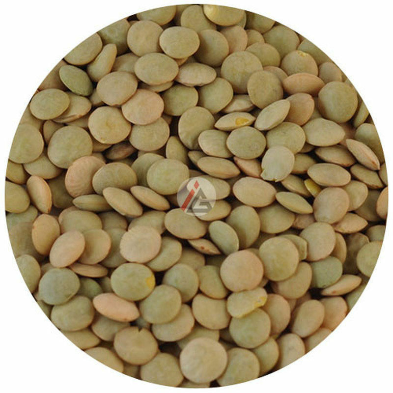 IAG - Whole Green Lentils - 1 KG