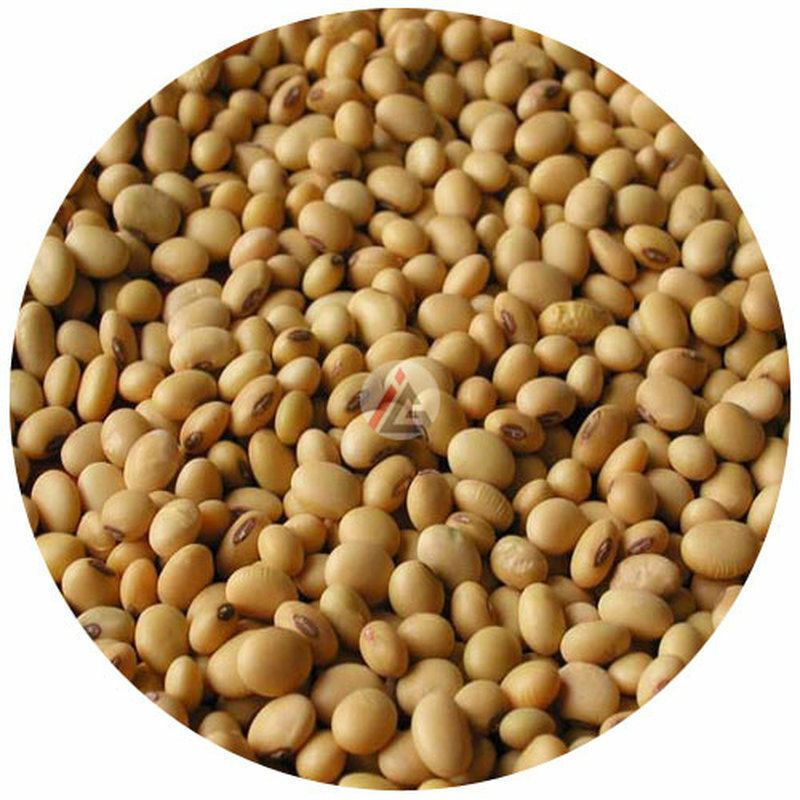 IAG - Soya Bean Seeds (Soybeans) - 450 gm